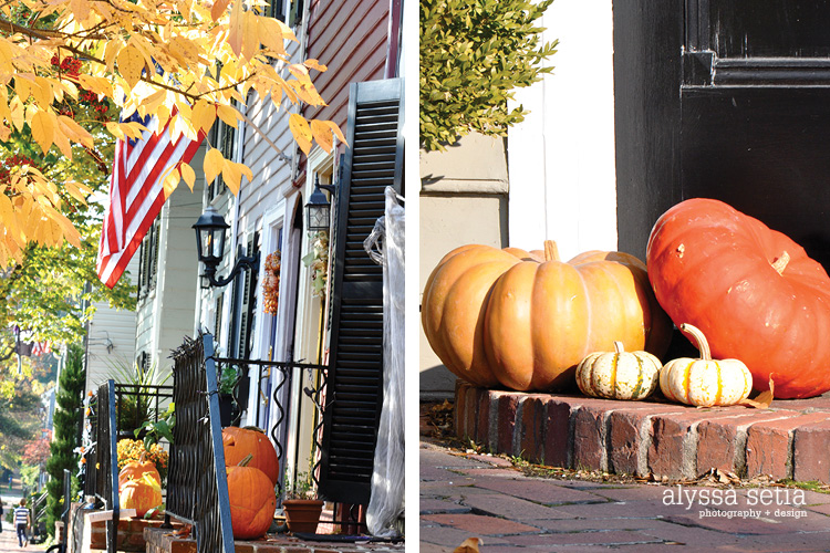 Fall + Old Town20
