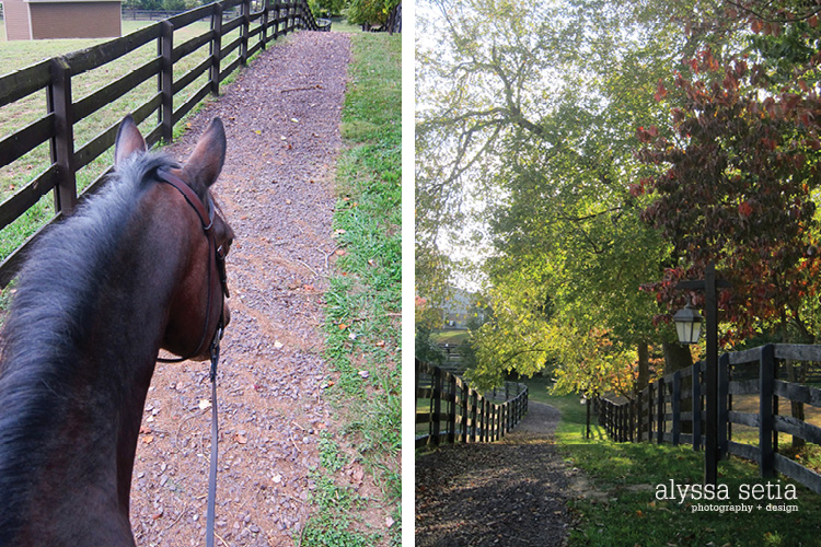 fall riding15