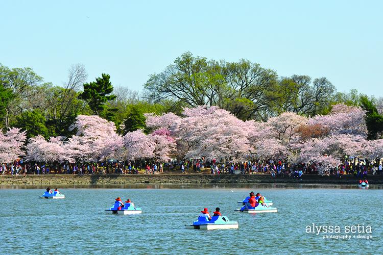 DC spring21