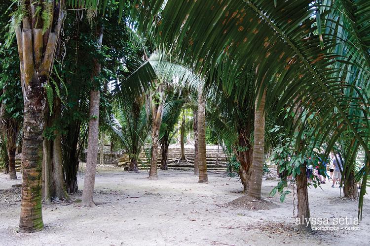 Cruise, Costa Maya15